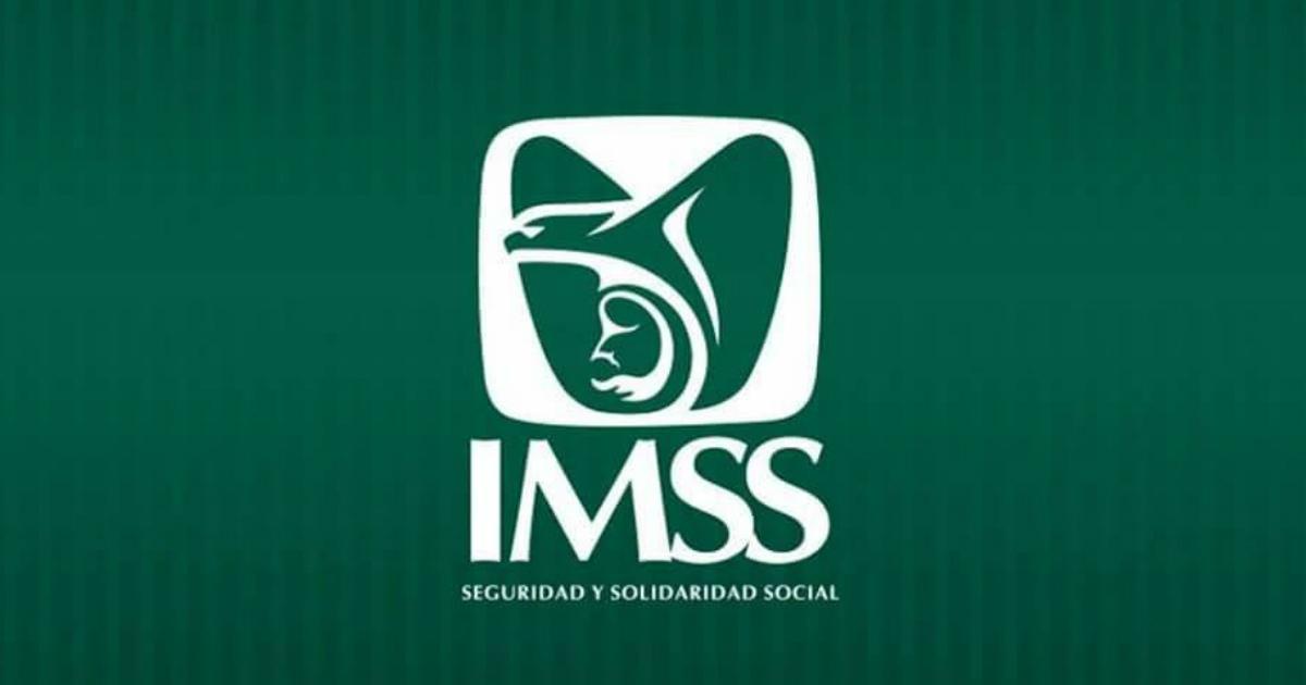 Ana Paulina Sánchez Palafox, historia de un despido injustificado en el IMSS. Foto: Logotipo del IMSS.